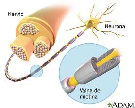 Neuralgia del Trigémino Dr Ruiz Villandiego Servicio Odonotología Dentista Donosti San Sebastian